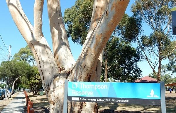 6 Essendon Park