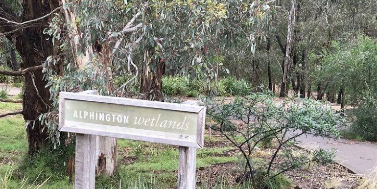 9 wetlands