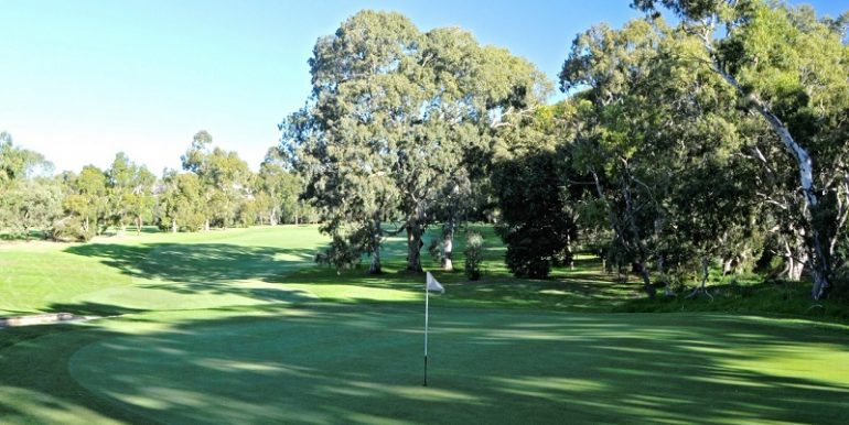 6 golfcourse