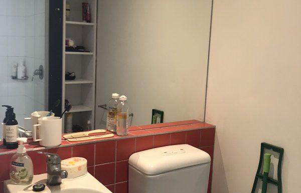 5 303 Bathroom