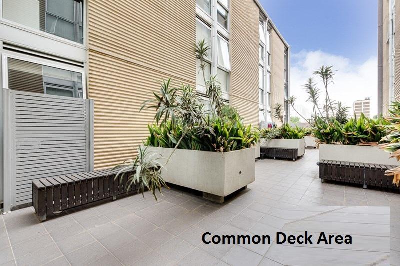 5 313 Common Deck