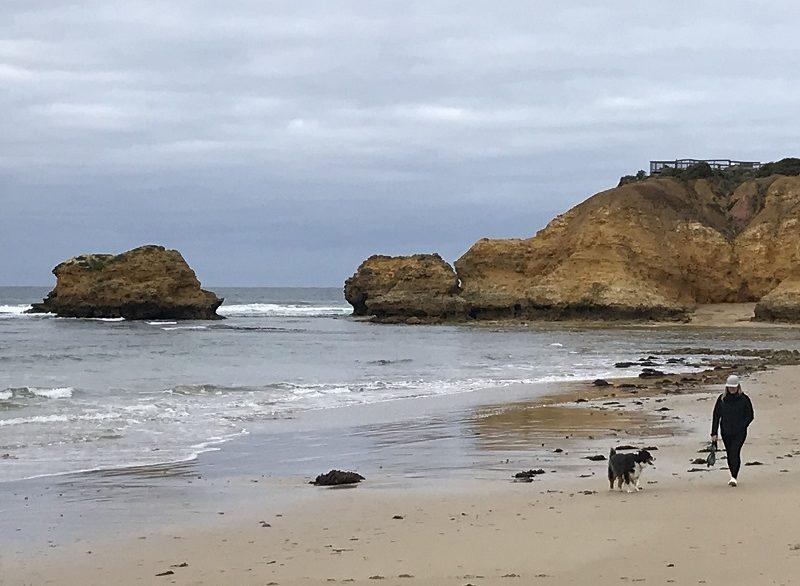 2 beach dog