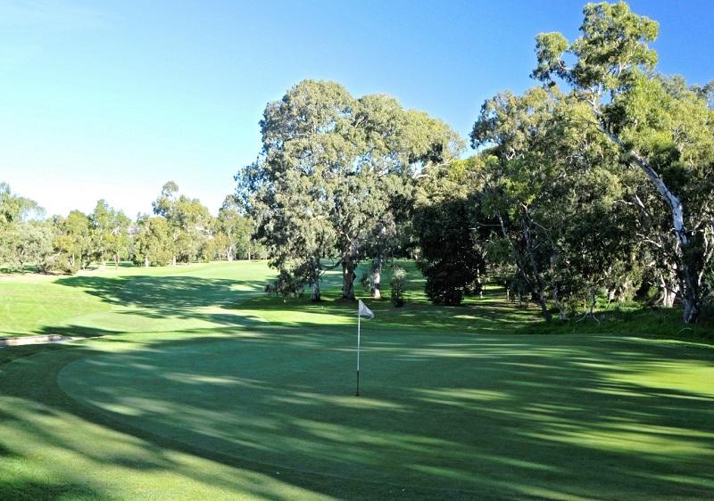 7 golfcourse